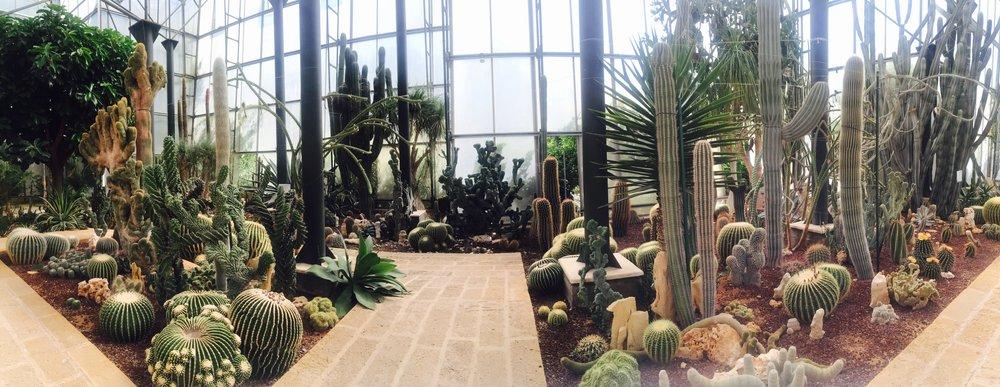 La Cutura Botanical Garden