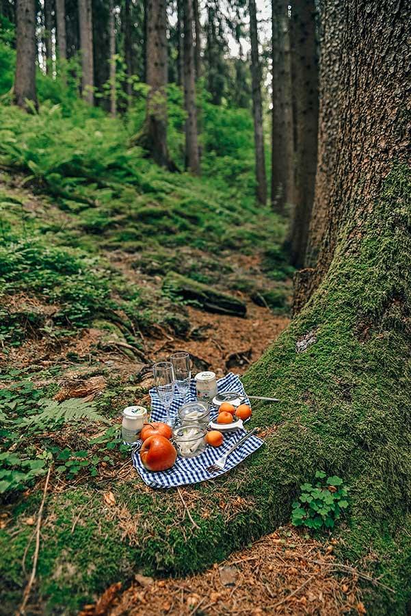 picnic woods alto adige
