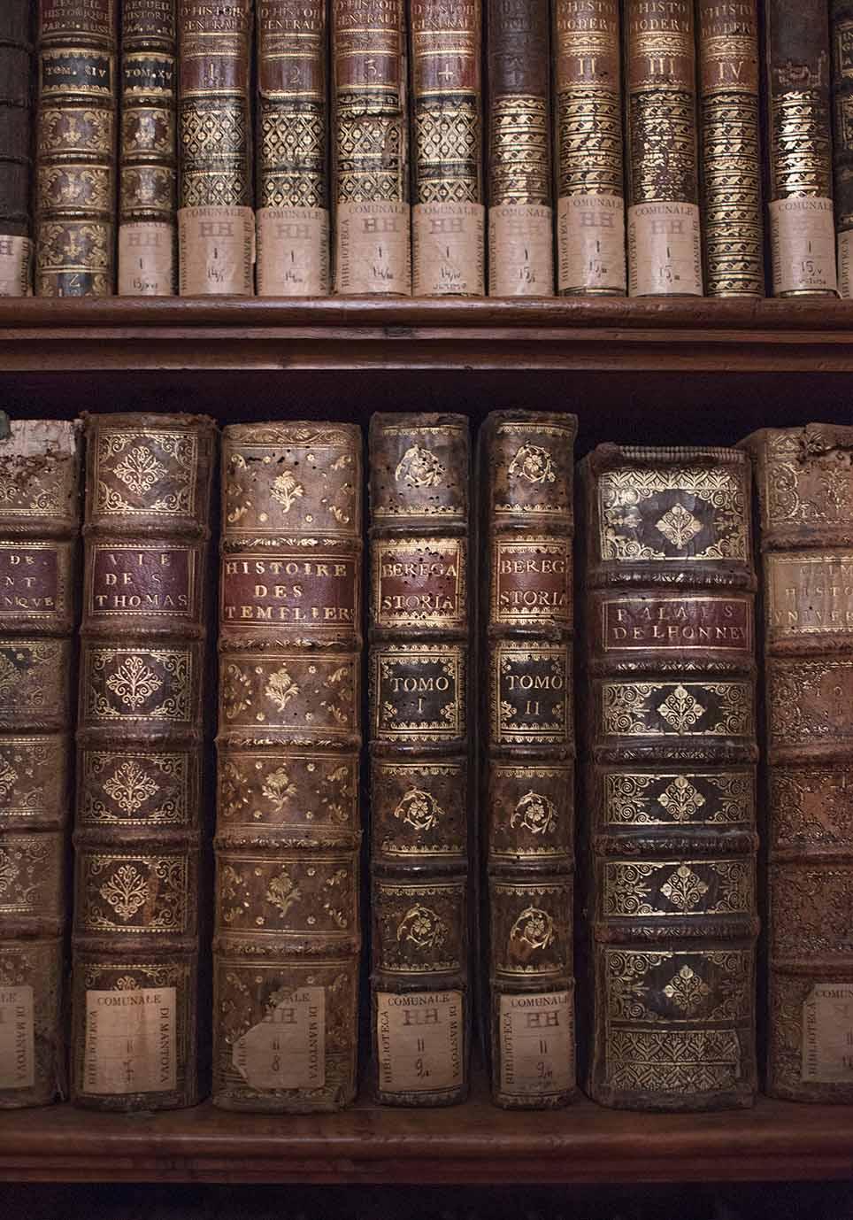 biblioteca teresiana mantova libri